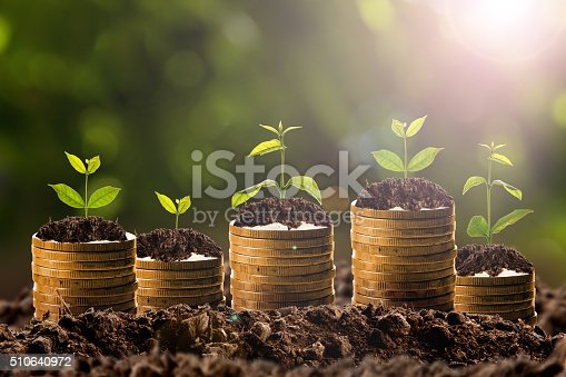 istock Money growing in soil , Business success concept. 510640972