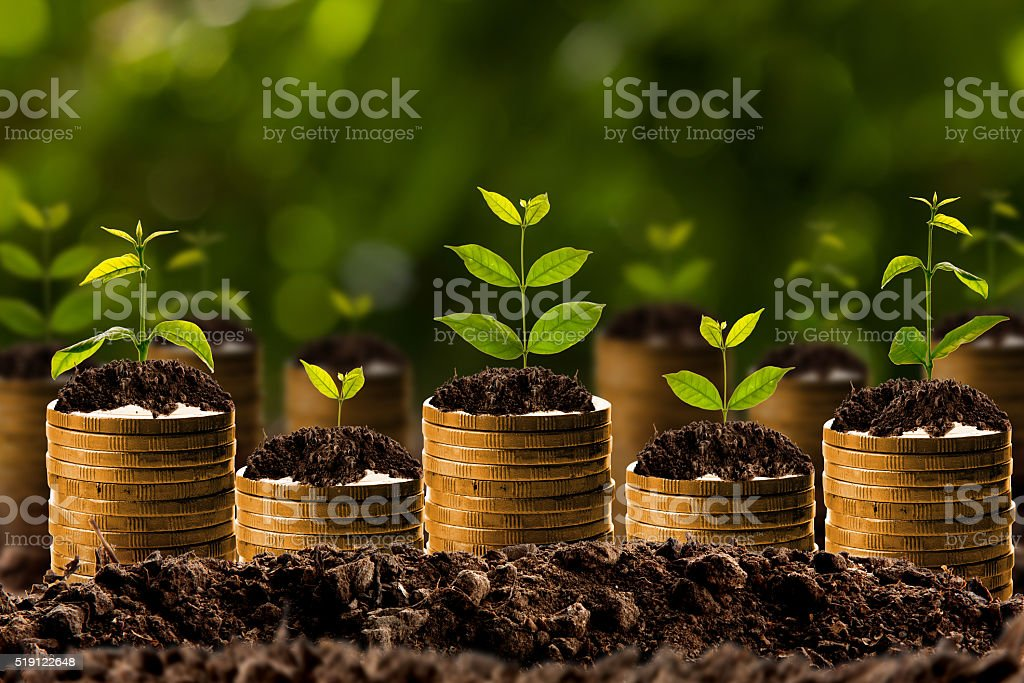 Geld wachsen im Boden, Business-Erfolg-Konzept. – Foto