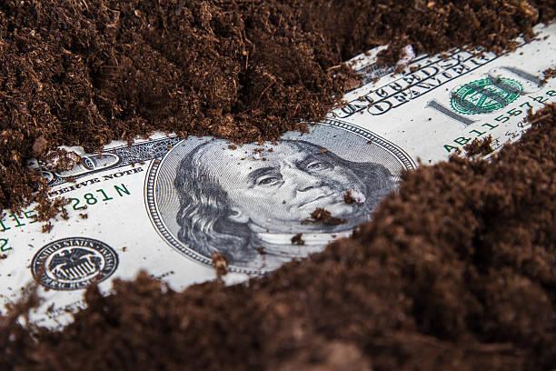 money growing in soil - dirty money bildbanksfoton och bilder