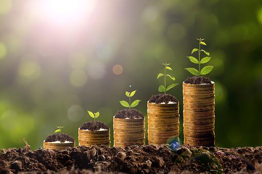 Geld Wachsen Im Boden Stockfoto und mehr Bilder von Anfang