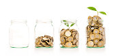 istock Money growing plant step with deposit coin in bank concept. 614055346