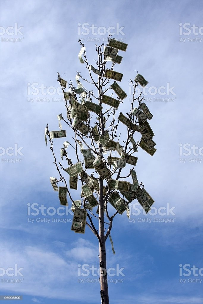 Money Grows On Trees royalty-free stock photo