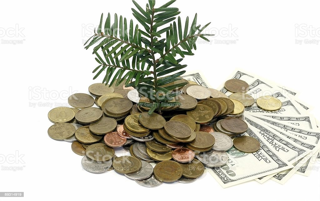 Money Growth Concept royalty-free stock photo