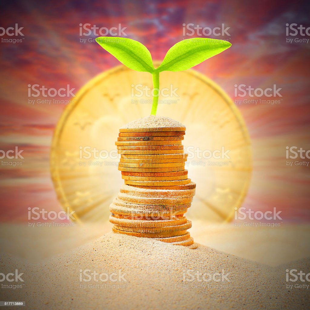 Money growth. stock photo