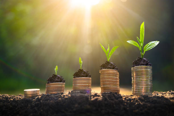 money growth saving money. upper tree coins to shown concept of growing business - guadagnare soldi foto e immagini stock