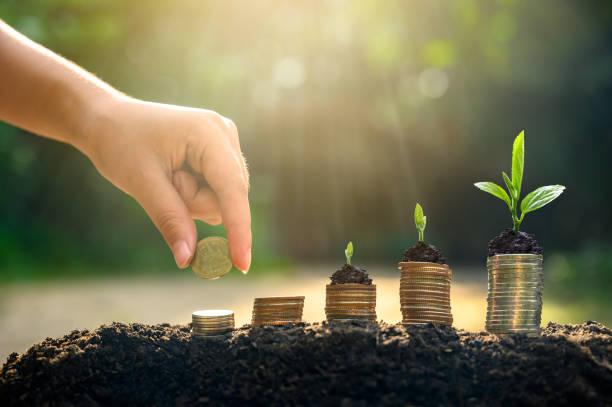 crecimiento del dinero ahorro de dinero. monedas de árbol superior para mostrar concepto de negocio en crecimiento - inversión fotografías e imágenes de stock