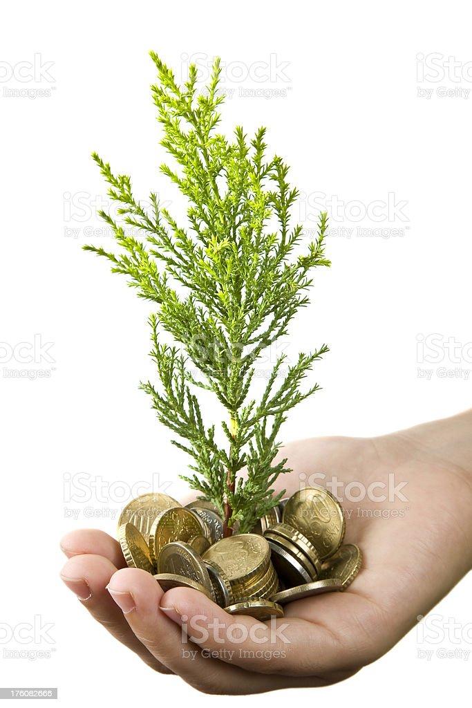 money hand royalty-free stock photo