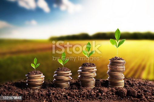 Money is born soil in the bottom of the plantations. Agribusiness profit land value and agricultural startups