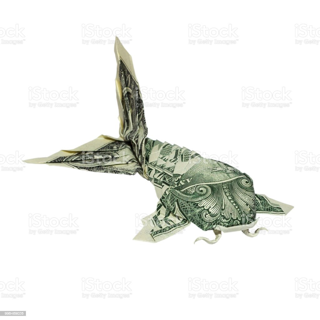 Money Origami Koi Fish Folded With Real One Dollar Bill Isolated On