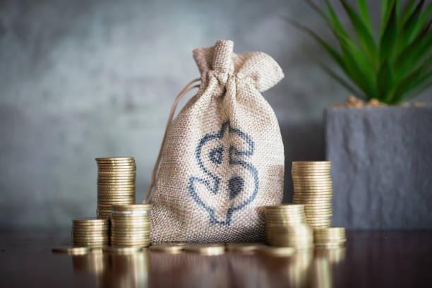 geld besparen, investeringen, geld verdienen voor de toekomst, financiële vermogensbeheer concept. stapel munten groeien. cash in hennep zakken. - geld verdienen stockfoto's en -beelden