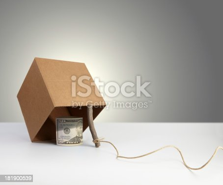 Money placed under a trap.Please see some similar pictures from my portfolio: