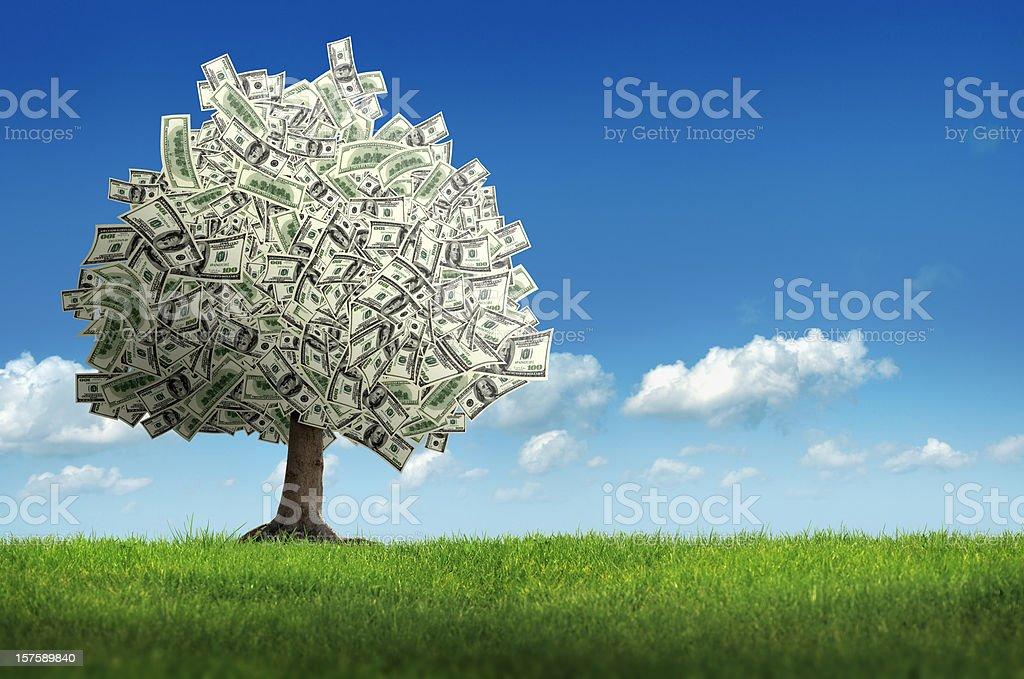 метод проекта дерево с денежными расходами Helly Hansen также