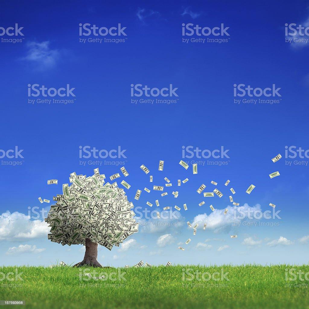 money tree - Royalty-free Achievement Stock Photo