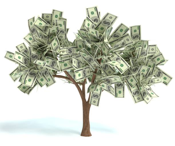 Money Tree 3d illustration of a Money Tree money tree stock pictures, royalty-free photos & images