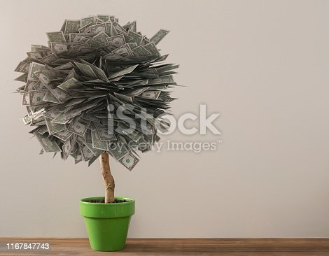 Money tree wealth and retirement concept with copy space
