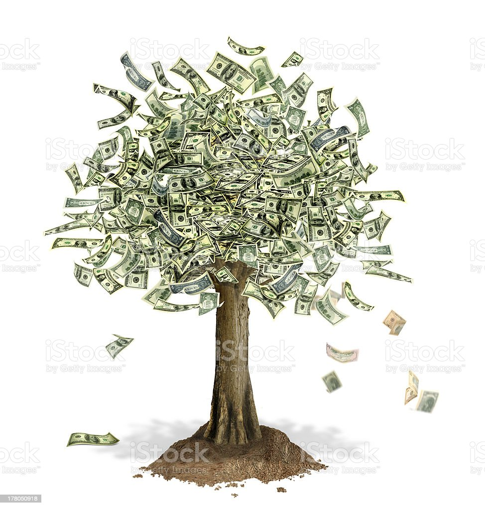 Money Tree with US Dollar banknotes in place of leaves. stock photo