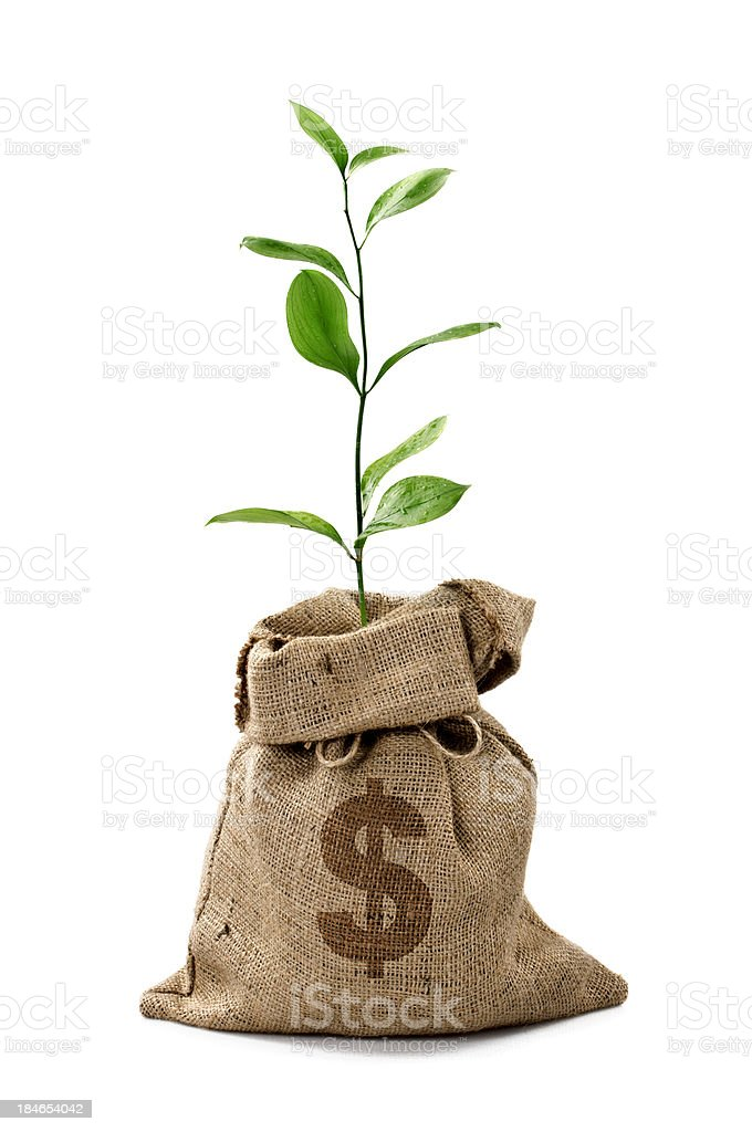 Árbol de dinero/bolsa de dinero con dólares - foto de stock