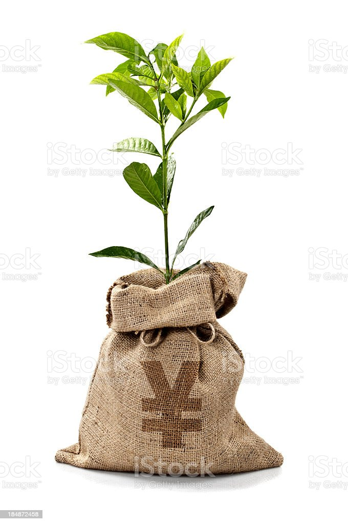 Money Tree/Money Bag With Yens royalty-free stock photo