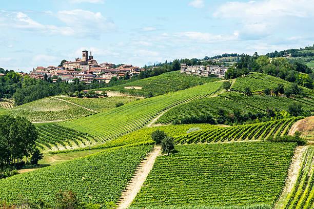 Monferrato (Itália - foto de acervo