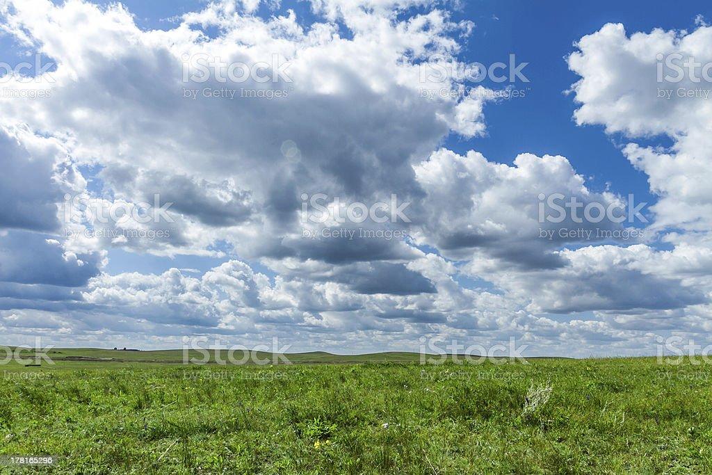 mongolia grassland royalty-free stock photo