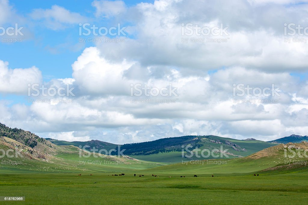 Mongolia: Steppes Landscape stock photo