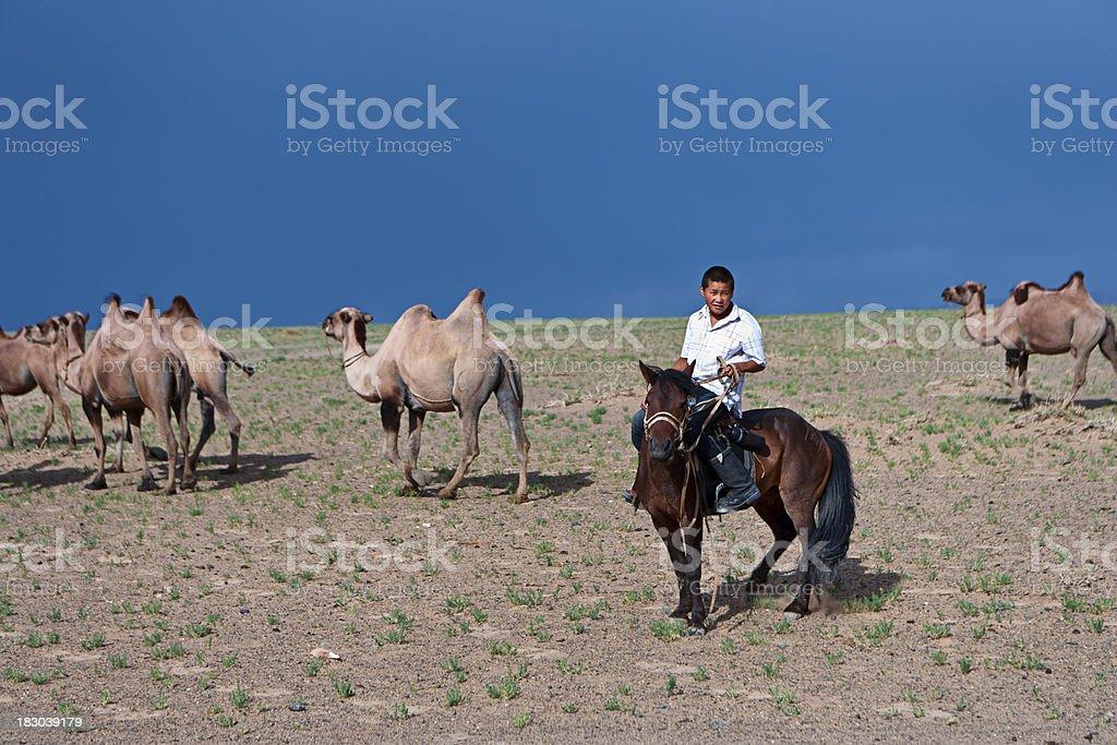 Mongolian boy riding a horse, stock photo