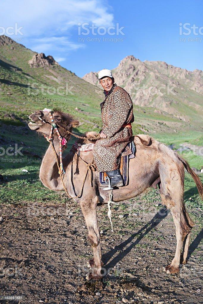Mongolian camel rider royalty-free stock photo