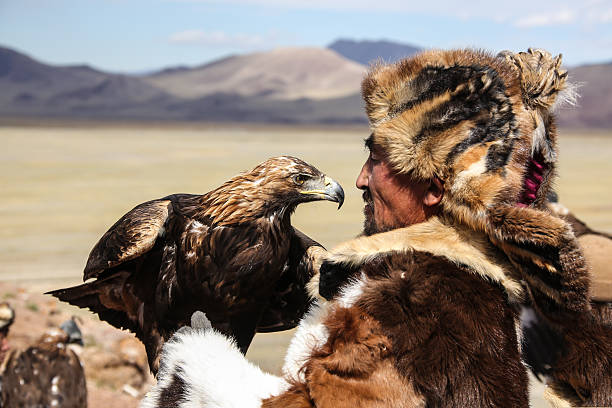 Mongolian eagle hunter Sagsay, Mongolia - September 21, 2012: Mongolian eagle hunter.A mongolian eagle hunter  from Kazakh tribe with his eagle on the arm. He wears his traditional skin clothes, which are typical for western Mongolia, Altai area.Kazakh people in  the western part of mongolia domesticate female golden eagles for hunting. By this eagles they are hunting hare, foxes and even wolves during the very cold winter time. steppe stock pictures, royalty-free photos & images