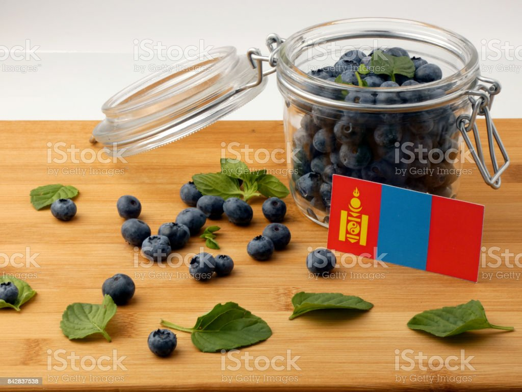 Mongolian flag on a wooden plank with blueberries isolated on white stock photo