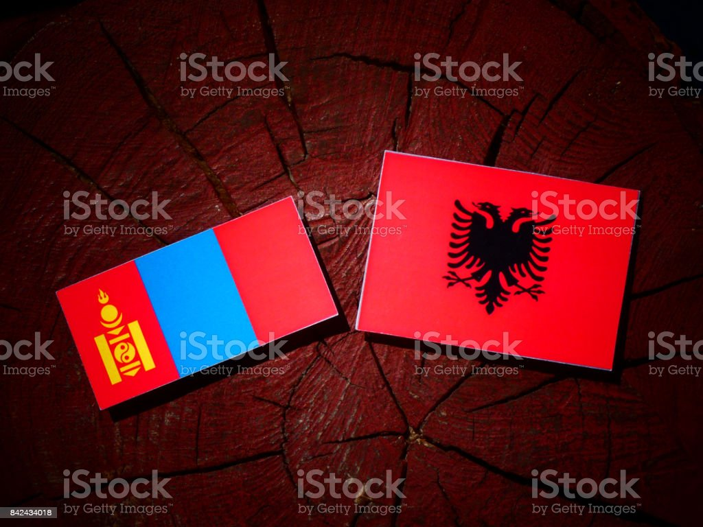 Mongolian flag with Albanian flag on a tree stump isolated stock photo