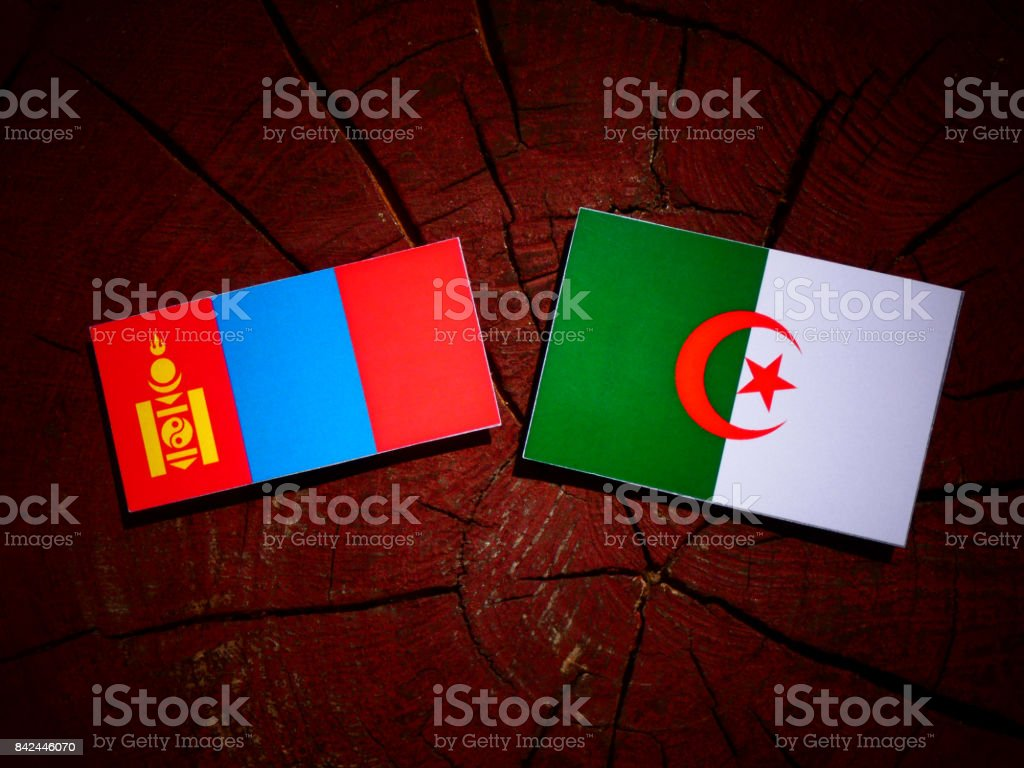 Mongolian flag with Algerian flag on a tree stump isolated stock photo