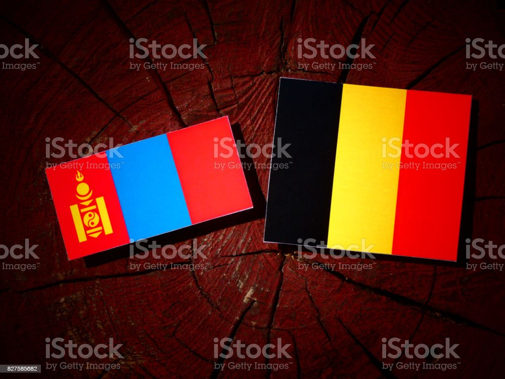 Mongolian flag with Belgian flag on a tree stump isolated stock photo