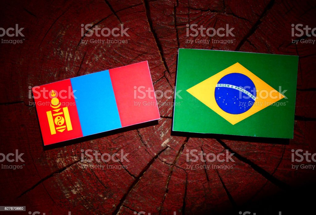Mongolian flag with Brazilian flag on a tree stump isolated stock photo