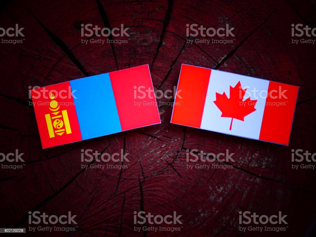 Mongolian flag with Canadian flag on a tree stump isolated stock photo