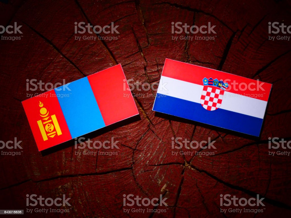 Mongolian flag with Croatian flag on a tree stump isolated stock photo