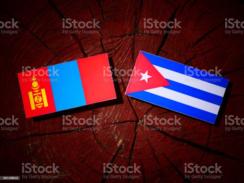 Mongolian flag with Cuban flag on a tree stump isolated stock photo