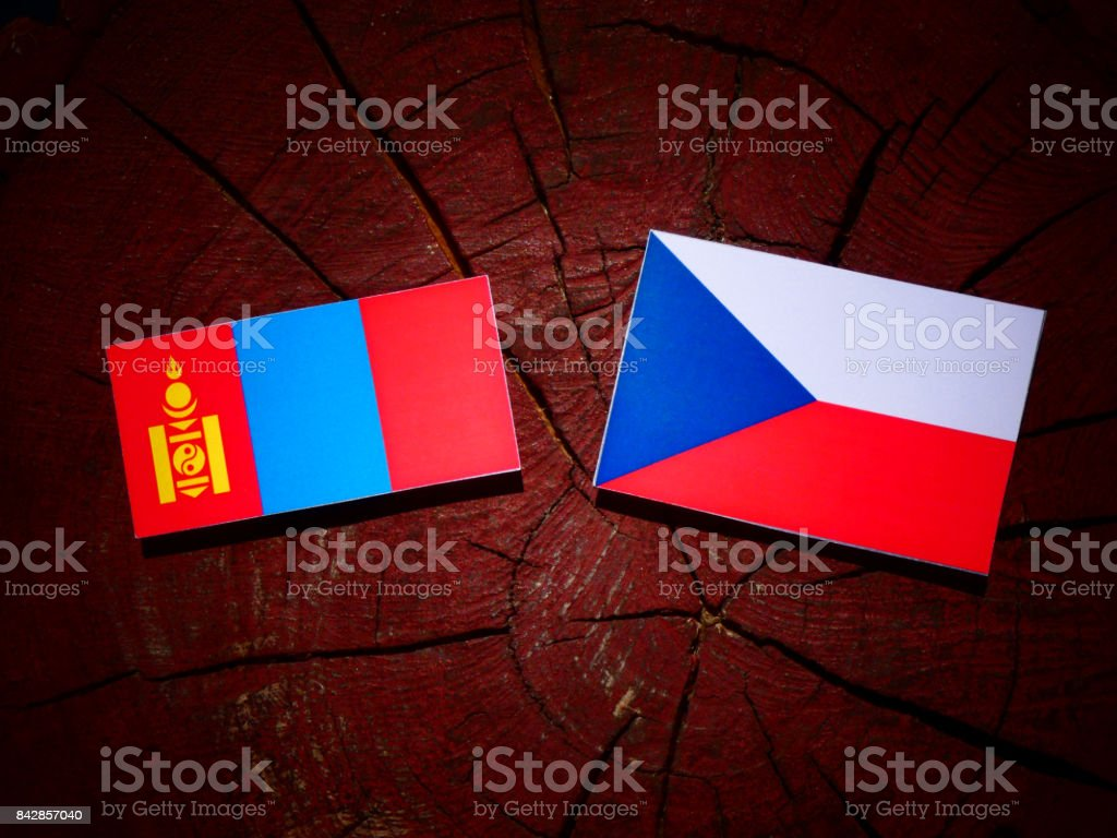 Mongolian flag with Czech flag on a tree stump isolated stock photo