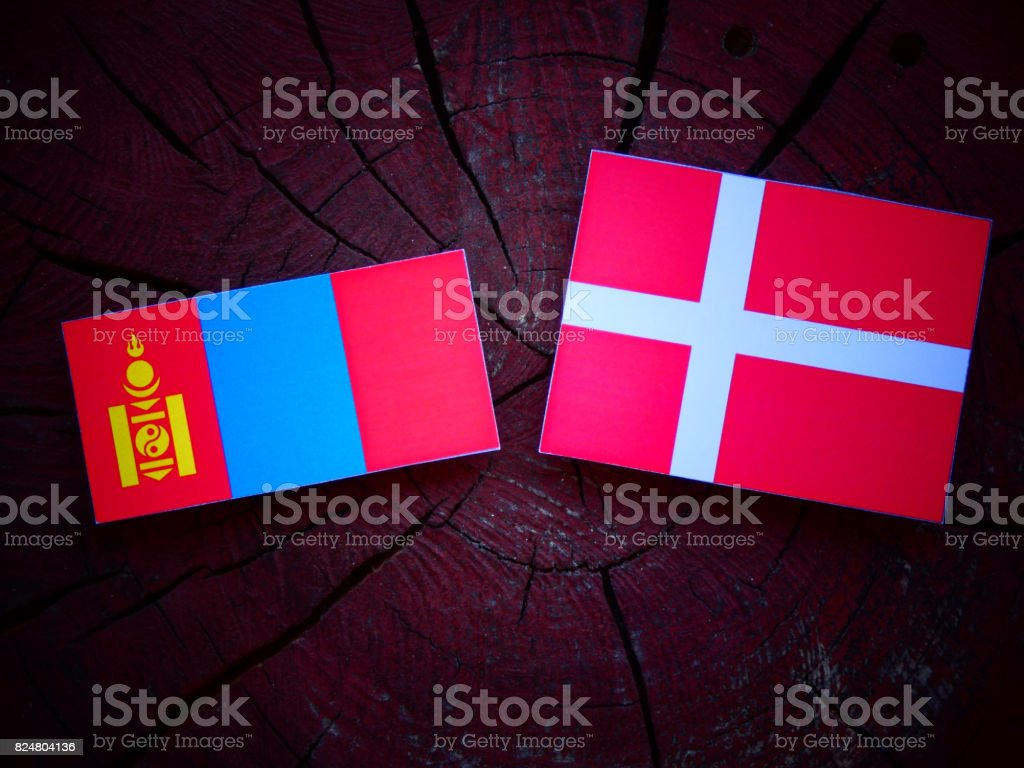 Mongolian flag with Danish flag on a tree stump isolated stock photo