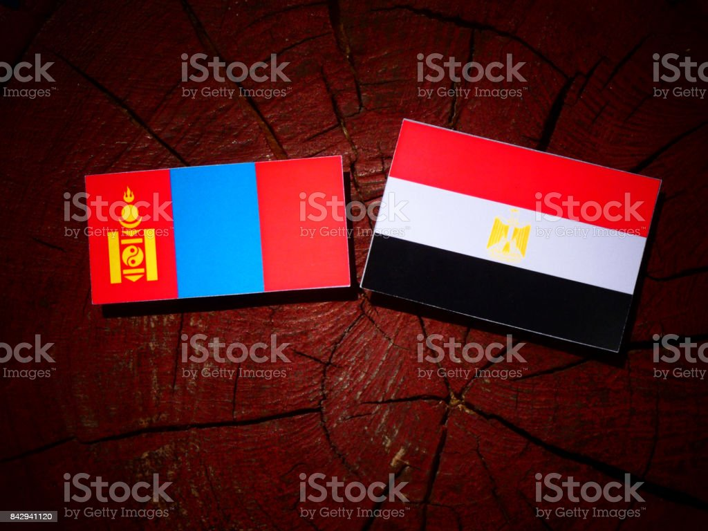 Mongolian flag with Egyptian flag on a tree stump isolated stock photo