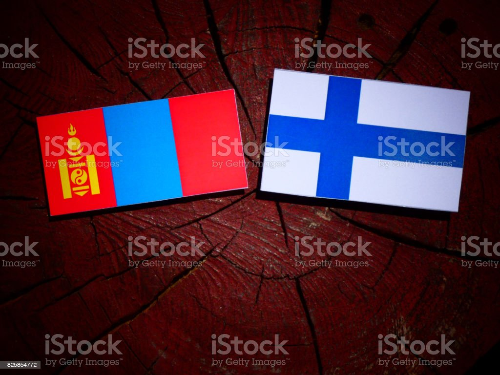 Mongolian flag with Finnish flag on a tree stump isolated stock photo