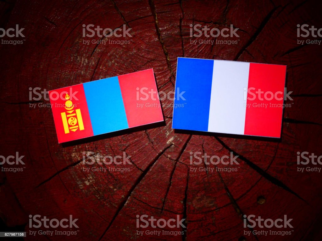 Mongolian flag with French flag on a tree stump isolated stock photo