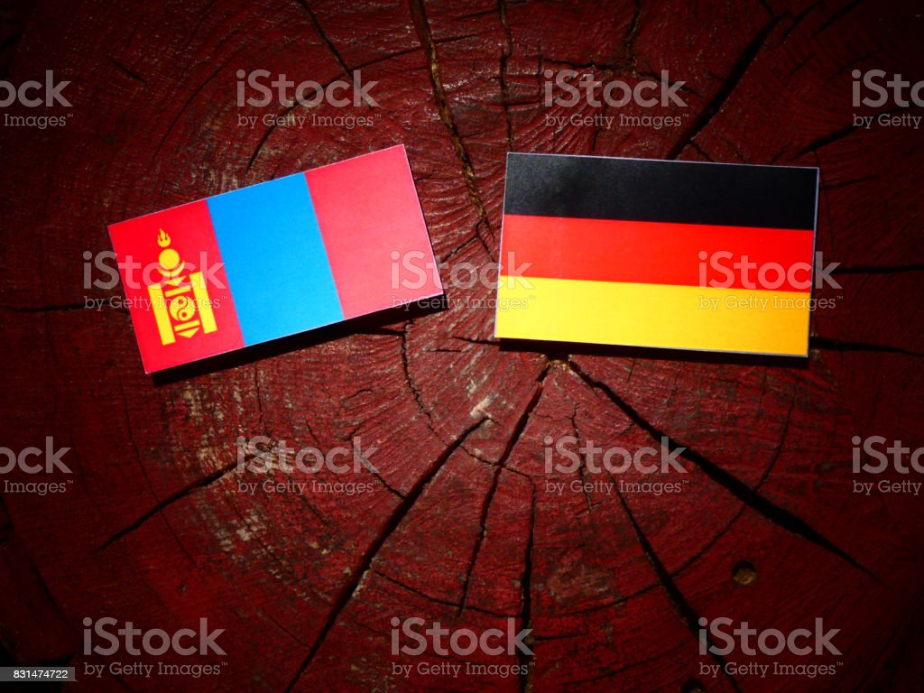 Mongolian flag with German flag on a tree stump isolated stock photo