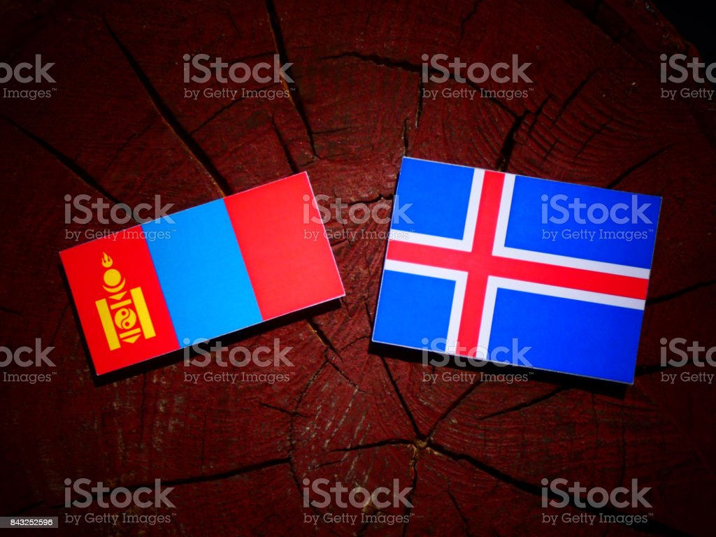 Mongolian flag with Icelandic flag on a tree stump isolated stock photo