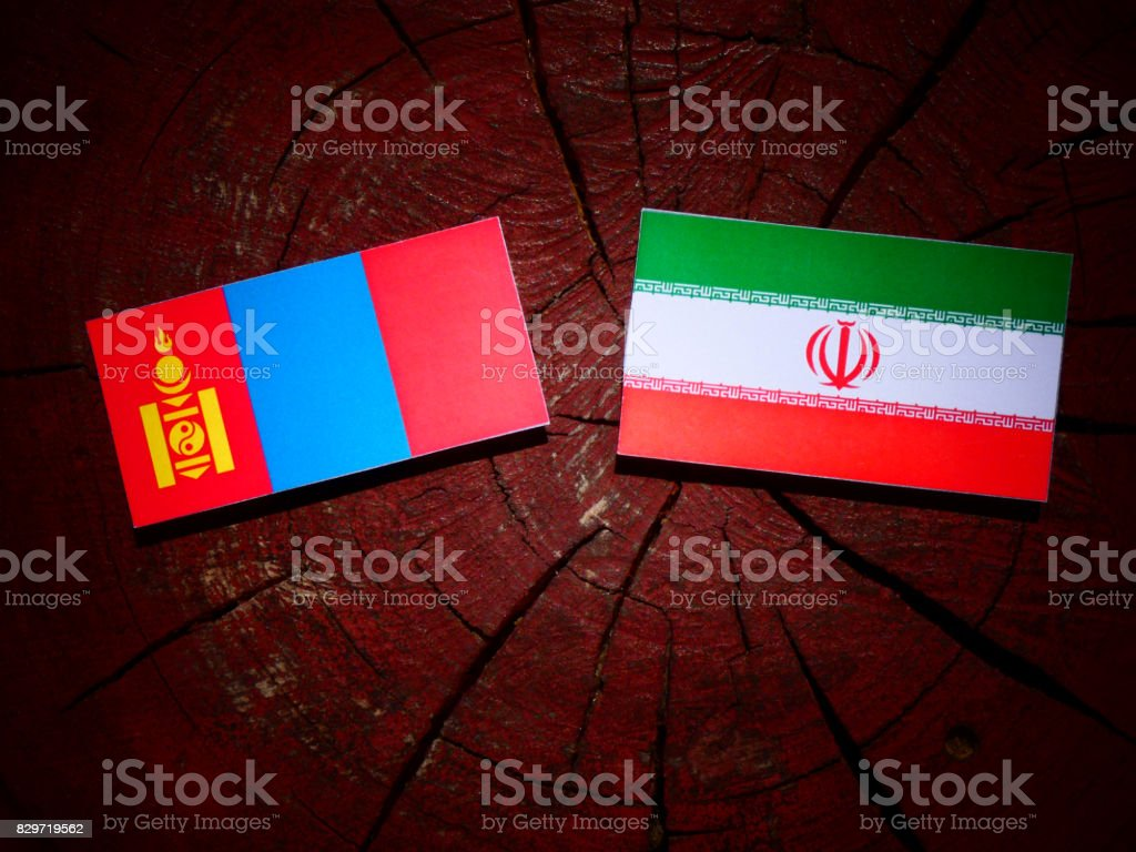 Mongolian flag with Iranian flag on a tree stump isolated stock photo
