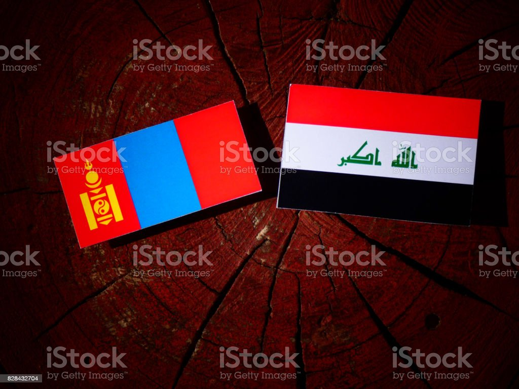 Mongolian flag with Iraqi flag on a tree stump isolated stock photo