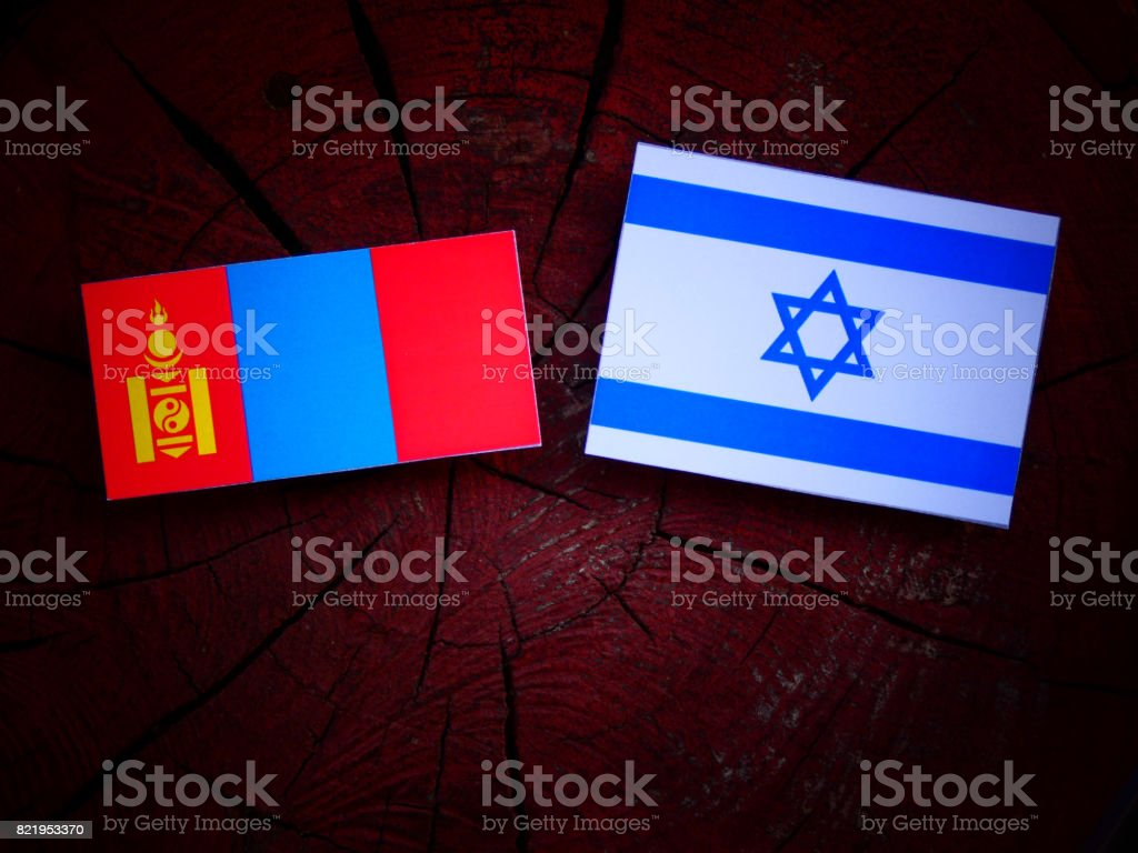 Mongolian flag with Israeli flag on a tree stump isolated stock photo