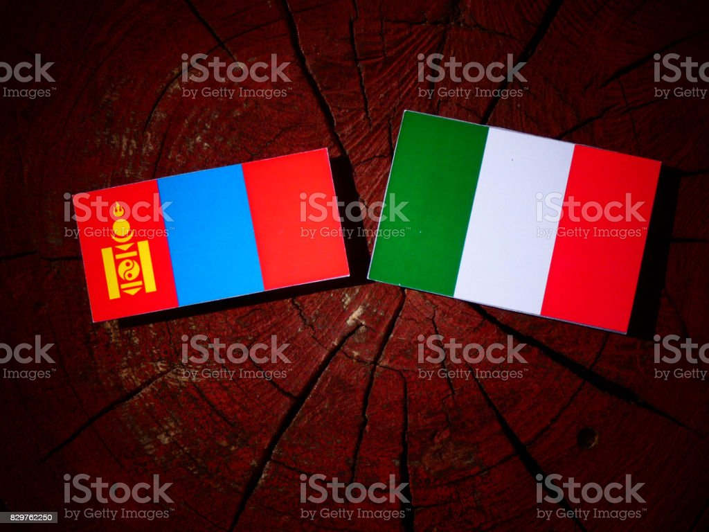 Mongolian flag with Italian flag on a tree stump isolated stock photo