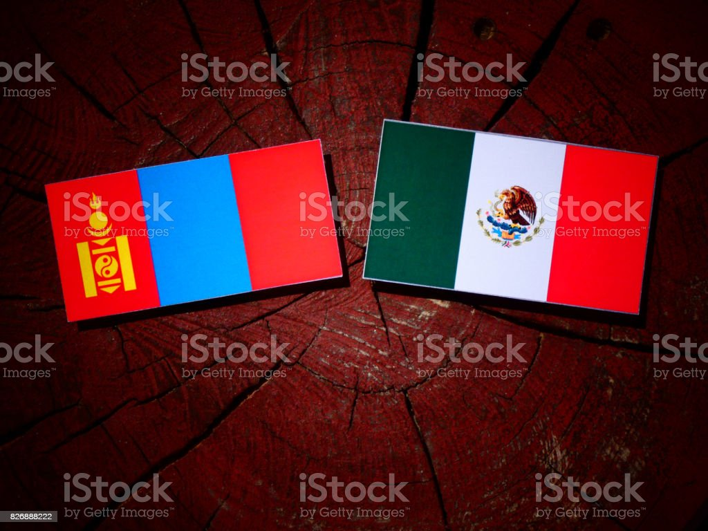 Mongolian flag with Mexican flag on a tree stump isolated stock photo
