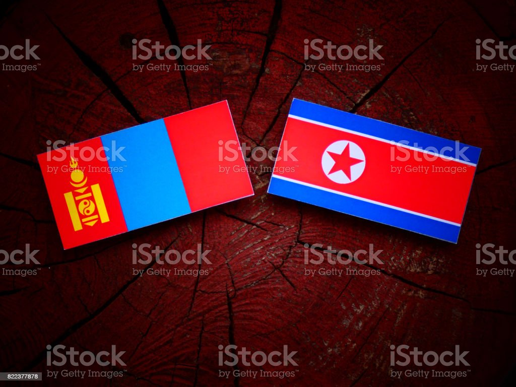 Mongolian flag with North Korean flag on a tree stump isolated stock photo