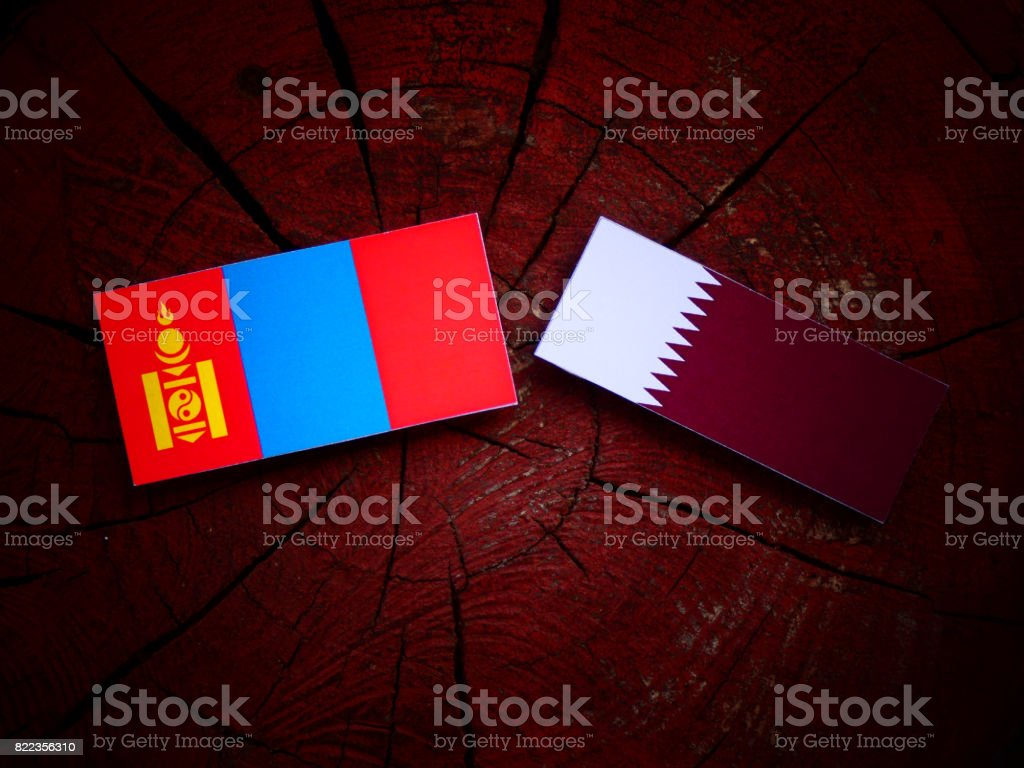 Mongolian flag with Qatari flag on a tree stump isolated stock photo
